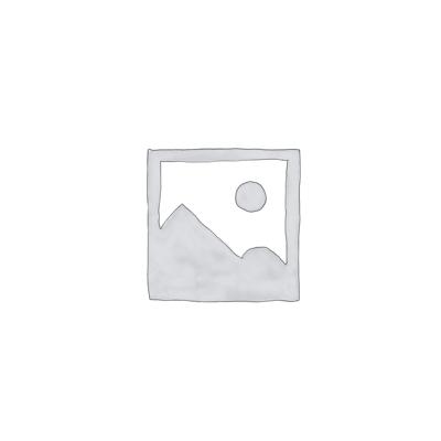 Mini Amaryllis